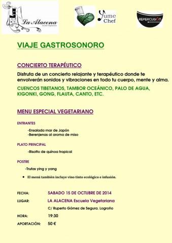 Concierto Cena Logroño 15-11-14