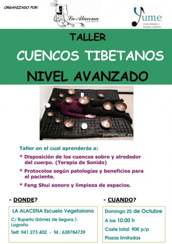 Taller Cuencos Logroño AVANZADO 25-10-15