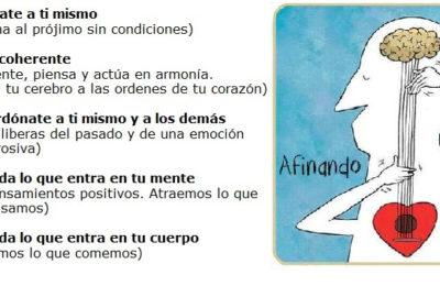 PRINCIPIOS DE YUME